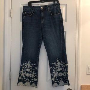 Anthropologie denim jeans